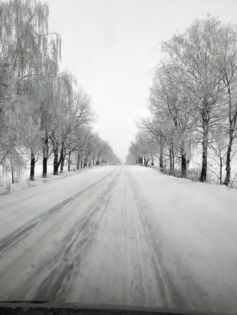 Winter road running between the frozen trees. 2019