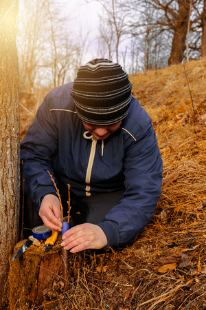 A gardener's woman clogs a cut-off part of the grafted tree to prevent rotting at this place in close-up 2019