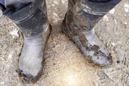 Top view of legs in black dark dirty rubber boots or wellingtons in mud and clay and manure 2019