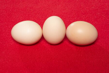 Whole eggs with set in a row on red background. 2019