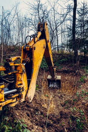The excavator works in the forest in clearing the forest. 2020 Zdjęcie Seryjne