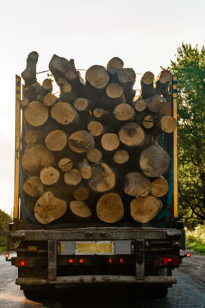 illegal removal and transportation of stolen forest, environmental problem. 2020