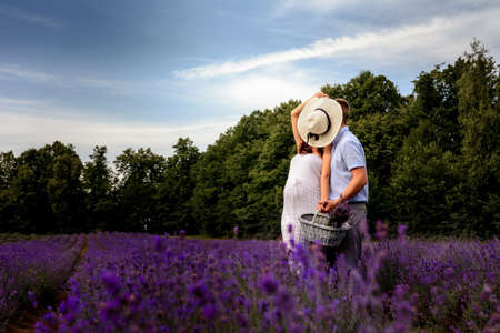 Fragrant lavender, a field of lavender bushes, a walk of a happy couple who is waiting for the birth of a child. new