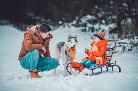 the girl is sitting on a sled, next to her dad with a husky, a winter walk in the woods on a sleigh with a dog. Archivio Fotografico