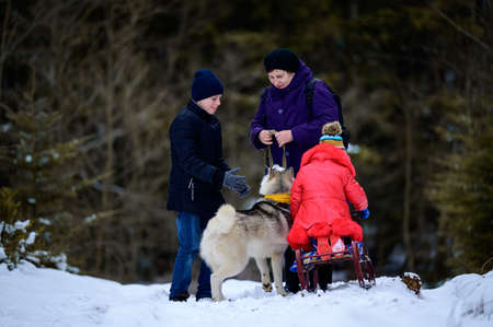 Grandmother with grandchildren and dog walking in the winter forest, winter fun.