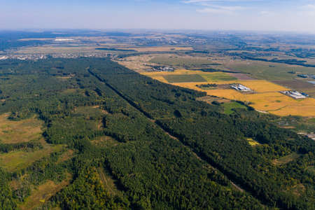 Flight over Ukrainian forests and fields, picturesque and destroyed forests, large-scale deforestation. new