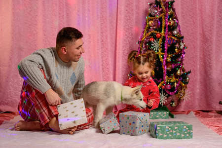 Family photo shoot near the Christmas tree with a pet, a Siberian Husky puppy near the Christmas tree. new