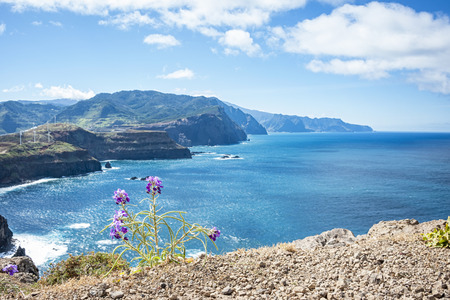 Madeira coast Stock Photo