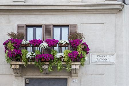 balcony window: Flowers on balcony