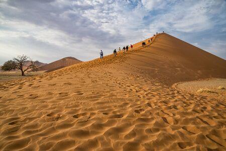 namibia: Dune 45 Namibia
