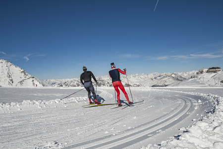 nordic: Nordic ski