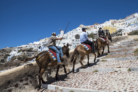 Santorini donkey ride Stock Photo
