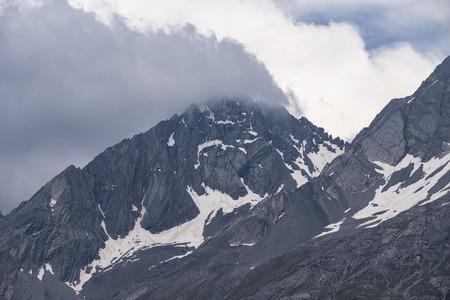 longs peak: Alpine vets Stock Photo