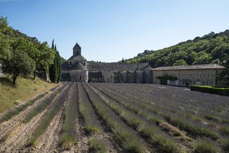 senanque: Senanque abbey