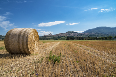 of assisi: Assisi landscape Stock Photo