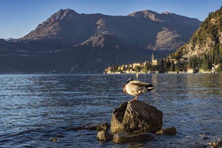 city park boat house: Lake Como Varenna