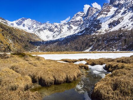 Spring thaw in the alps