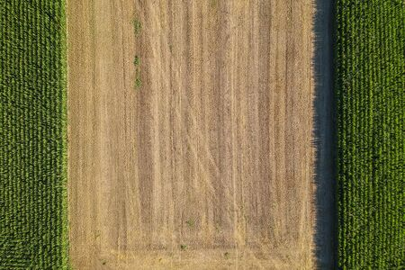 Agricultural field viewed from the top by a drone