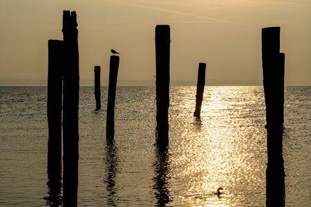 Wood mooring pole at sunset in Lake Garda