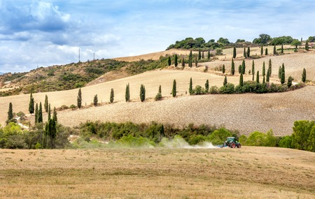 cultivator: Agriculture plowing tractor with a cultivator plow the field after the harvest. Winding road with cypresses on the sidelines walking over the hills and meadows in Tuscany, Italy.