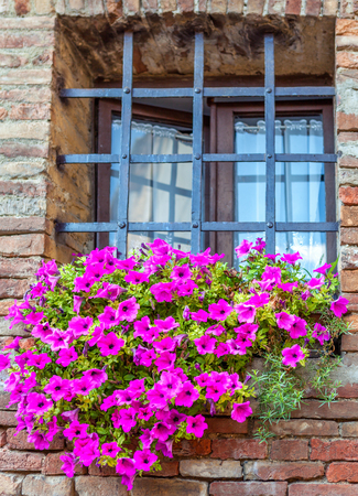 iron barred: barred window with a large flower bed of lilac flowers. Element of European house.