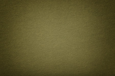 Dark green matte background of suede fabric, closeup. Velvet texture of seamless olive woolen felt with vignette.