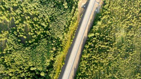 Aerial birds eye view over an empty country road without car between green forest on sunny day. Scenic top view from drone on nature landscape and highway. No traffic. Camera tilt down.