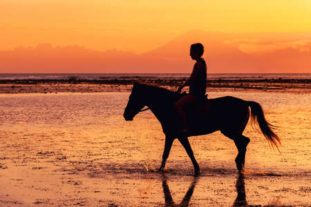 Dark silhouette of person riding horse in shallow water of seawater in sunset, Bali, Indonesia.