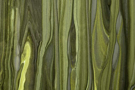 Abstract fluid art background dark green and olive colors. Liquid marble. Acrylic painting on canvas with khaki gradient. Watercolor backdrop with wavy glitter pattern. Stone section. Reklamní fotografie