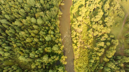 Aerial view from drone of mountain river and dense forest. Beautiful top view of streams and coniferous trees. Nature landscape on a sunny day. Water flow. Birds Eye view. Archivio Fotografico