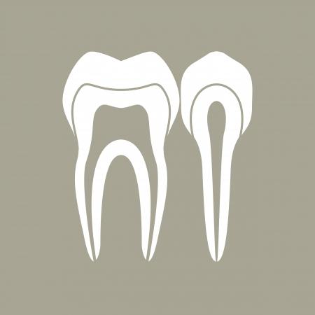 Teeth Stock Vector - 17122978