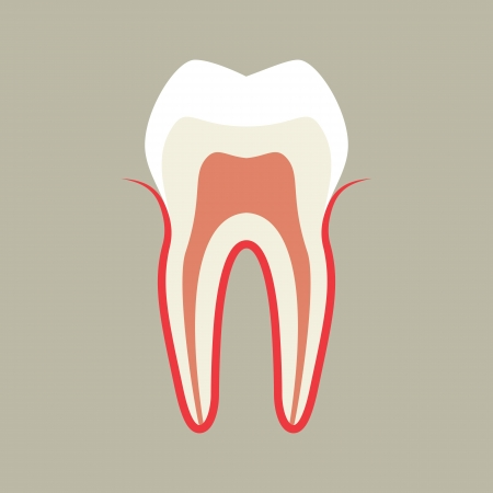 Tooth Stock Vector - 17151443