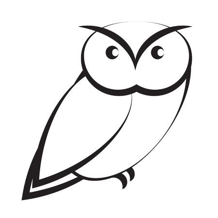 night owl: Owl isolated on white background