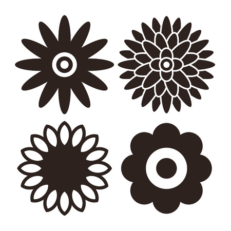 chrysanthemums: Flower icon set - gerbera, chrysanthemum, sunflower and daisy isolated on white background