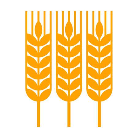 Wheat ear icon. Harvest symbol isolated on white background