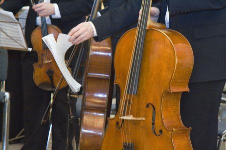 Musicians at the concert Standard-Bild
