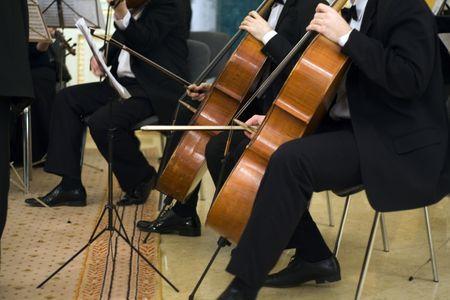 Musiker auf das Konzert  Standard-Bild - 1052461