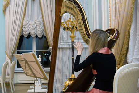 Young harpist at the concert in the palace Stok Fotoğraf