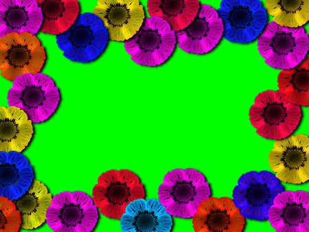 warmly: Frame multi-coloured flower on a green meadow