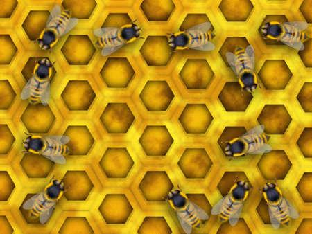 Bee plenty collecting nectar and making honey Stock Photo