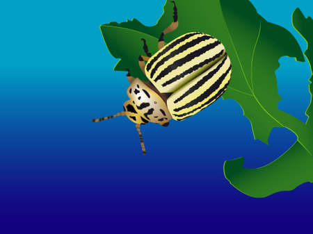 the wrecker: The striped bug the wrecker in a vector Illustration