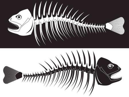 huesos: Huesos de un esqueleto de pescado Vectores