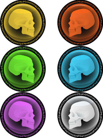 Glass buttons for design with a structure of a skull inside Stock Vector - 14637178