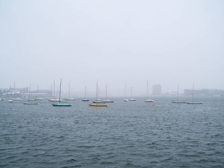 Snow falls around a cluster of sailboats in a harbor in the fog.