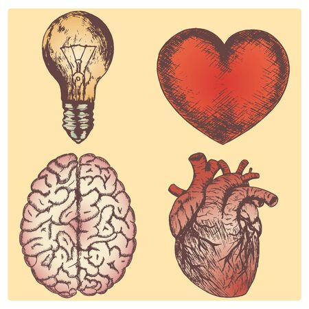 naturalistic: Hand drawn vector sketch illustration set - brain, love and naturalistic heart, light bulb, yellow background. Illustration