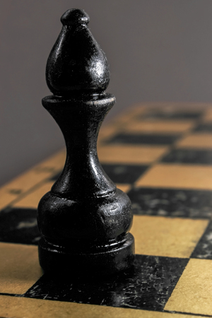 Image of chess pieces on the Board.Black elephant
