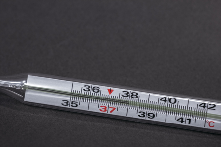 body temperature: Thermometer in hand isolated on white background. Temperature measuring by a thermometer. Fever measuring.