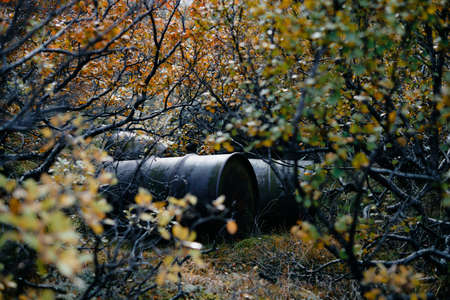 the uncovered an old rusty and leaky barrel of oil at the forest