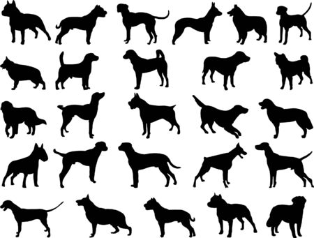big dogs collection vector Vector