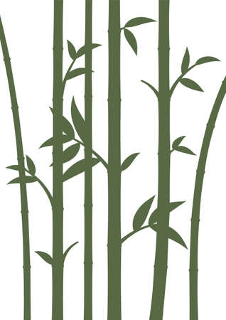 Background with bamboo stems. Home wall decor in minimalist style. Poster for living room. Vector.